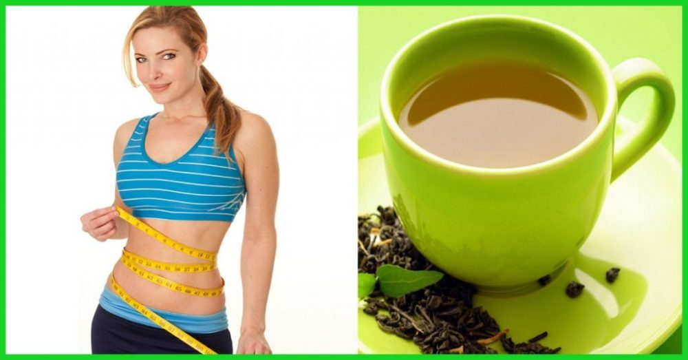 Green Tea Weight Loss - eBuddy News