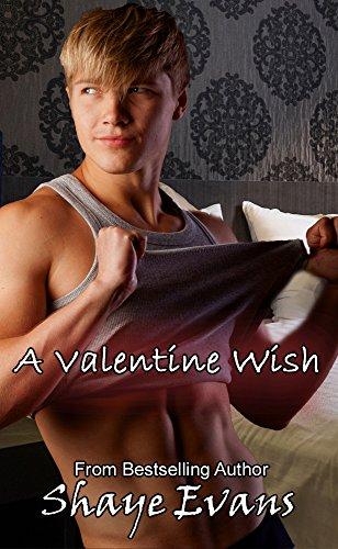 A Valentine Wish Shaye Evans