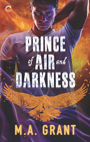 Prince of Air and Darkness (The Darkest Court Book 1) MA Grant
