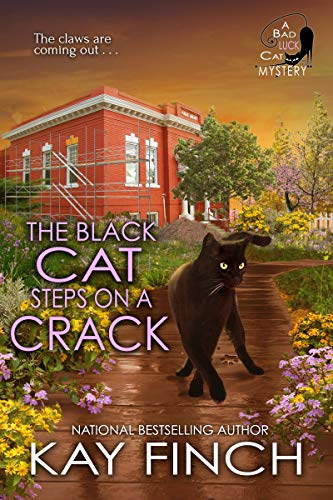 The Black Cat Steps on a Crack Kay Finch