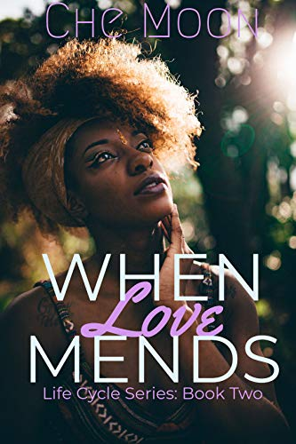 When Love Mends (Life Cycle Series Book 2)  Che Moon