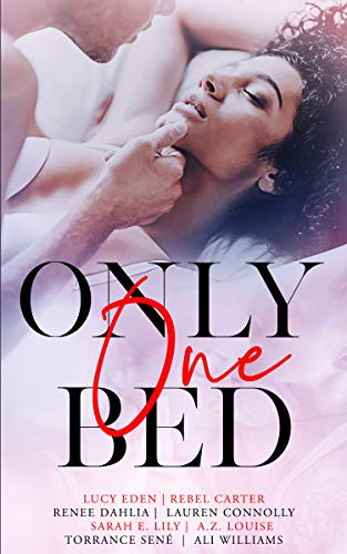 Only One Bed: A Steamy Romance Anthology Vol 1 Lucy Eden, Rebel Carter , et al.