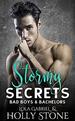 Stormy Secrets (Bad Boys and Bachelors Book 2) Holly Stone