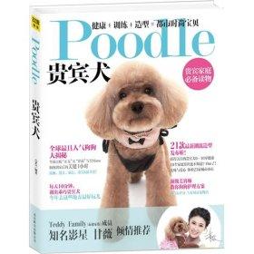 Poodle贵宾犬