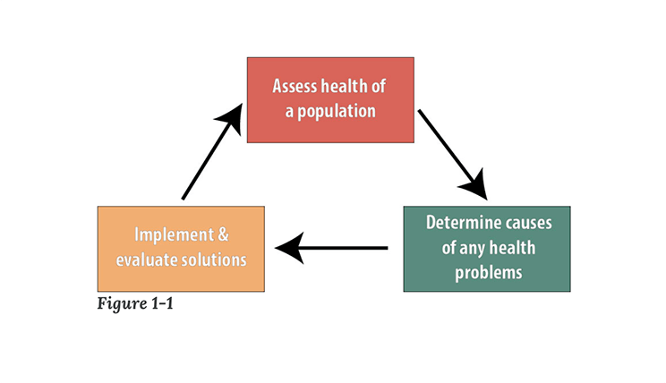 """A chart with three boxes and arrows describing the three main functions of public health. The top box says """"Assess health of a population,"""" with an arrow pointing down and to the right to another box that says, """"Determine causes of any health problems."""" An arrow is pointing left to another box that says, """"Implement & evaluate solutions."""" And that box is pointing back up and to the right to the first box."""