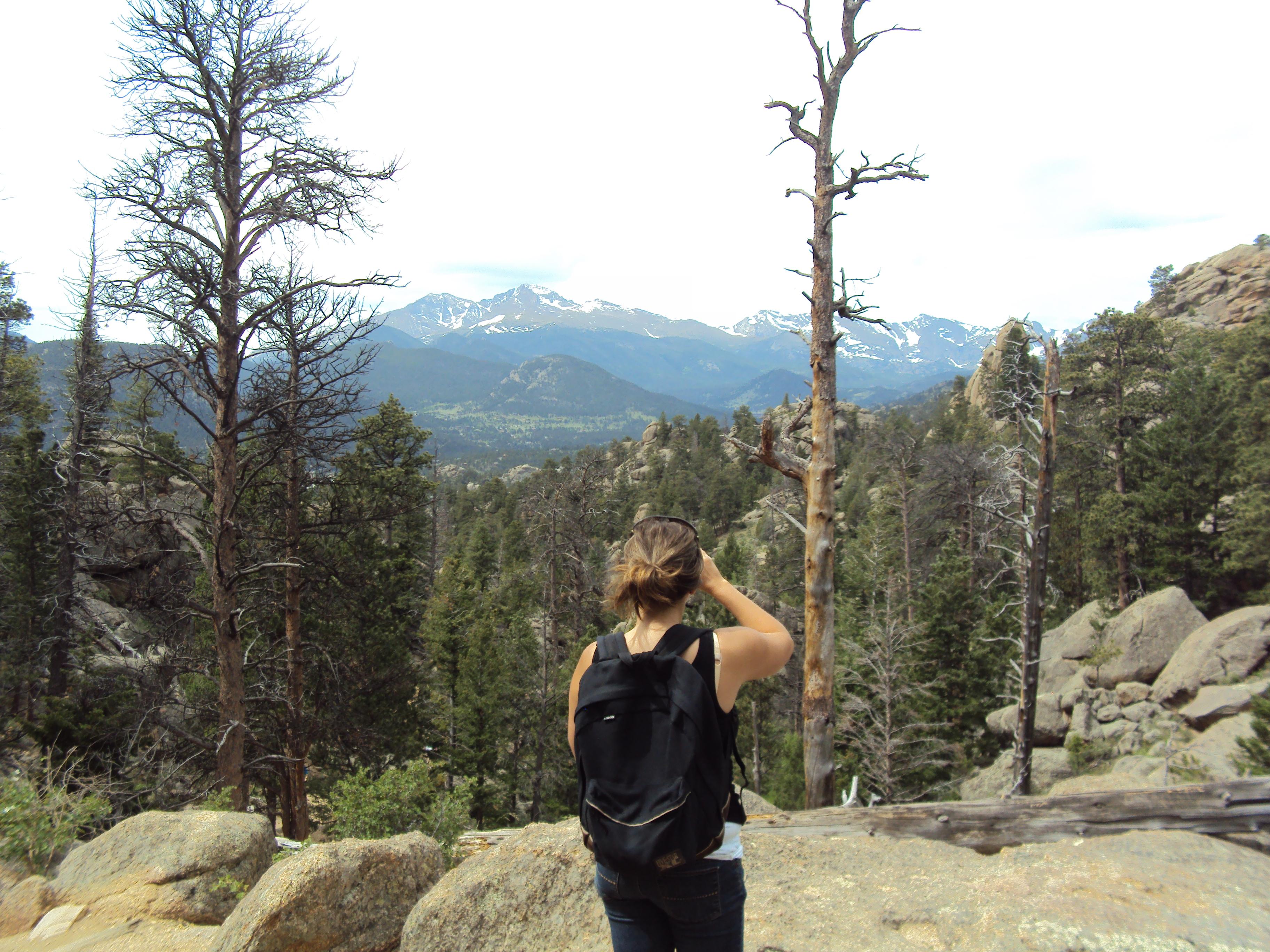 Lumpy Ridge Trail