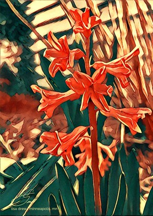 FloraDora-lisadrewphotos