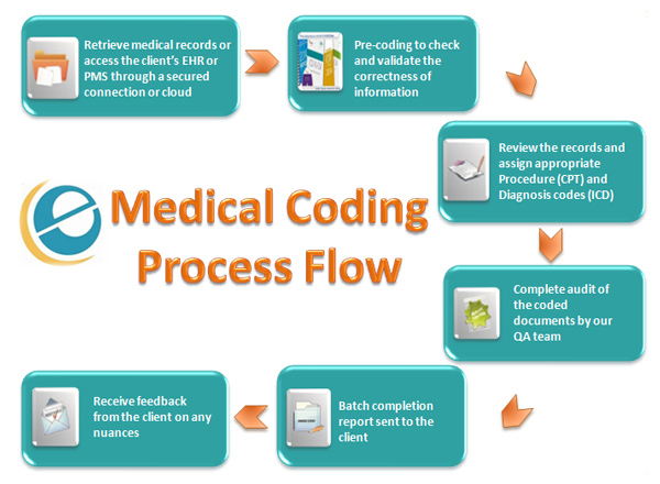 A Visual Guide To Medical Coding  Top Medical Coding Schools