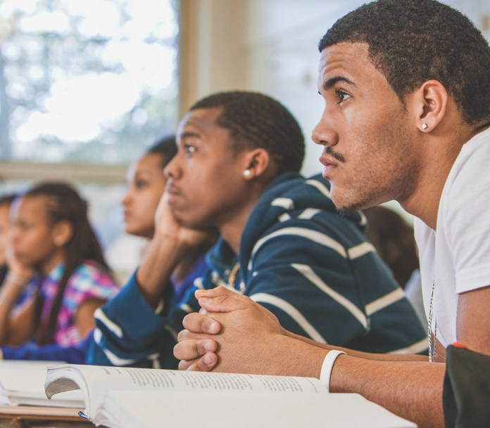 black stem learning