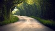 Fai un passo e la strada apparirà...