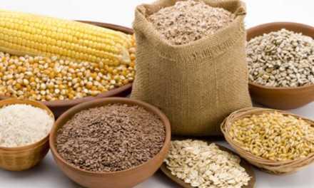 9 Cereali migliori per la tua dieta
