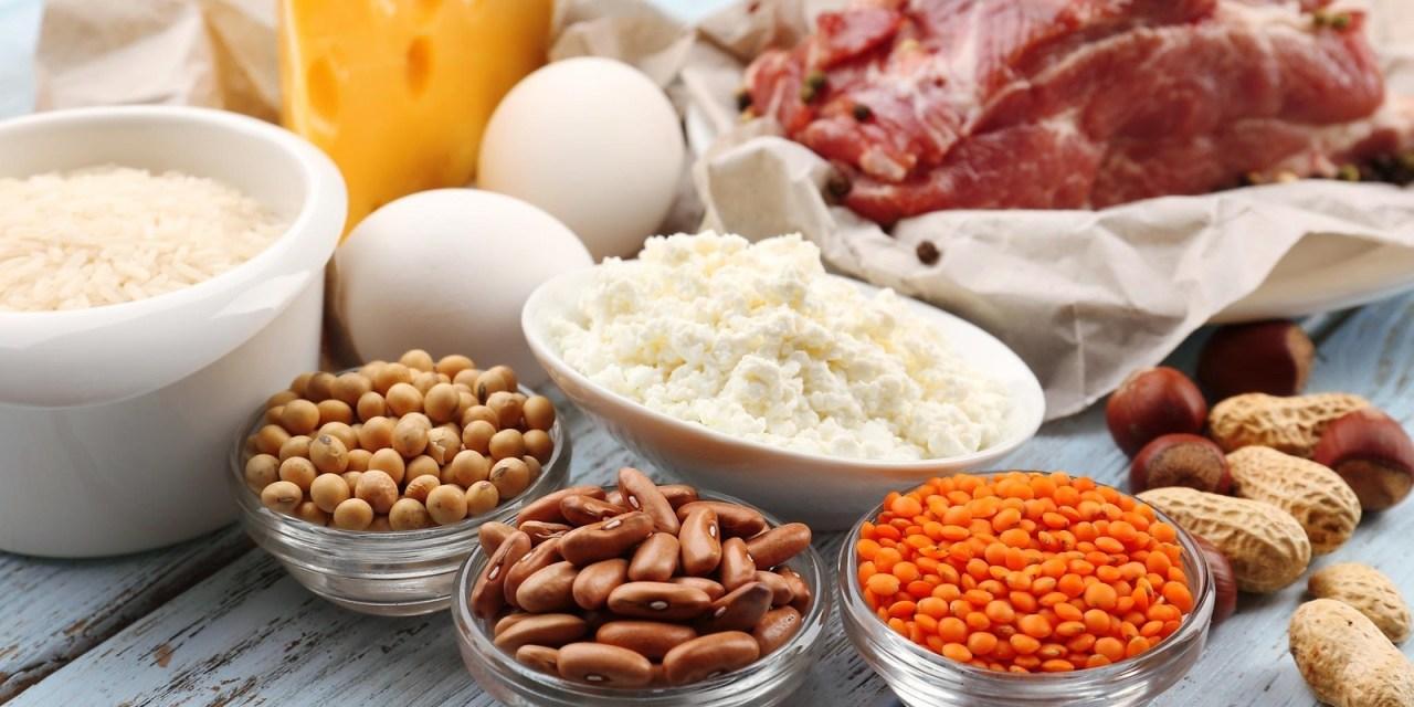 8 alimenti più proteici per perdere peso – eccellente donna