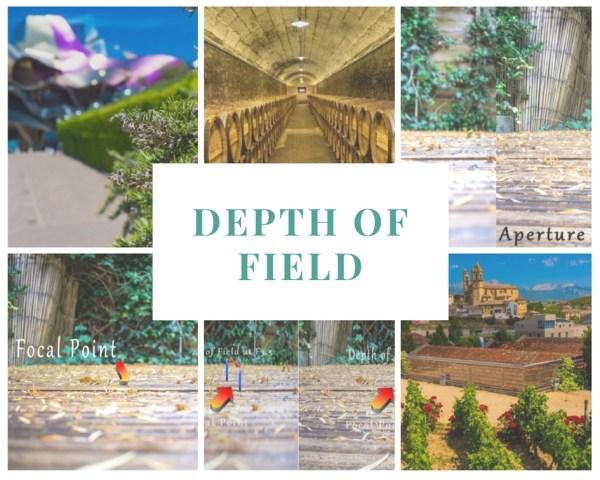 Depth of Field (1)