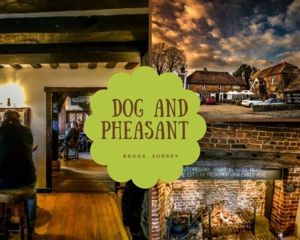 Dog and Pheasant Brook Surrey