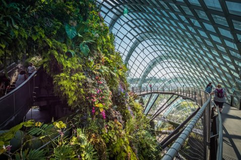 Cloud Dome Gardens by the Bay singapore