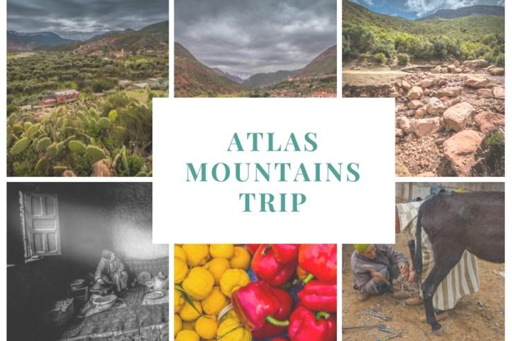 atlas mountains trip