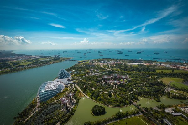 View Top of Marina Bay Sands
