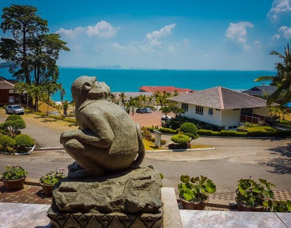 RTM Resort Monkey