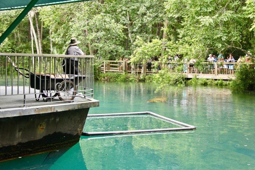 Viewing area at Homosassa Springs