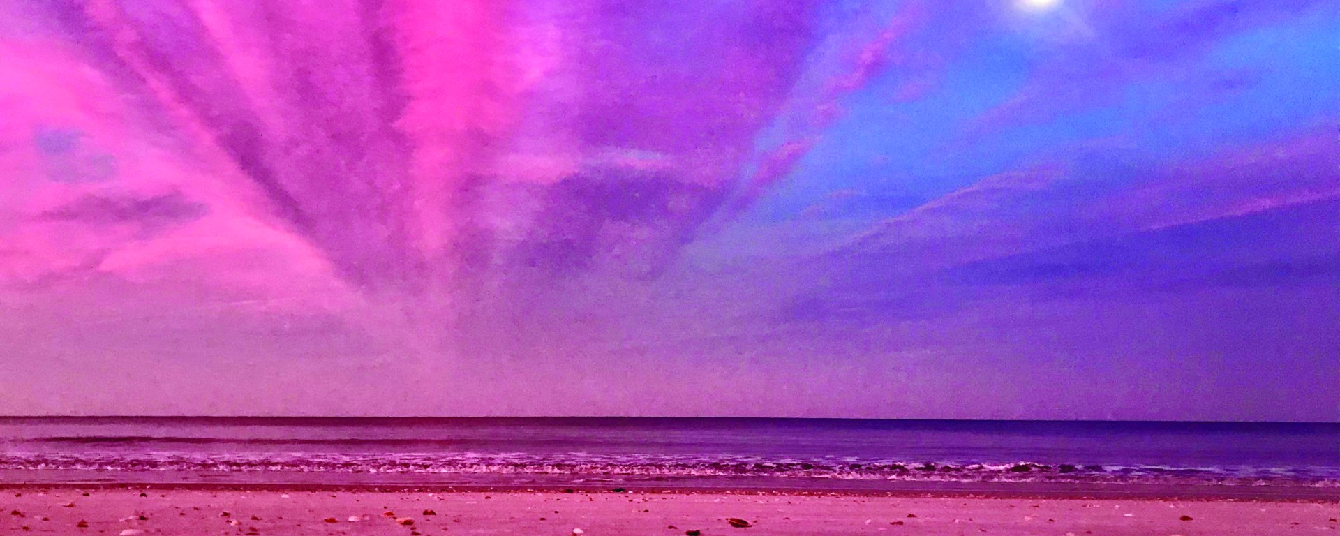 pink and blue skies over a seashell filled beach