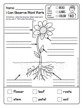200+ Page NO PREP Science Doodles First Grade Printables