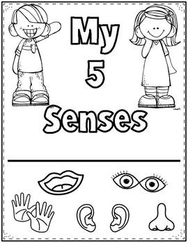 5 Senses Activity Book (English) by Bilingual Printable
