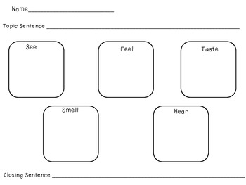 5 Senses Graphic Organizer for Writing Workshop by Julie's