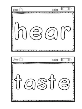 5 Senses Interactive Notebook Sample by Creative in Kinder