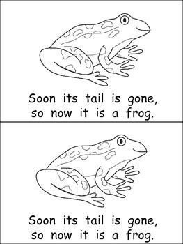 A Frog's Life Emergent Reader for Kindergarten- Life
