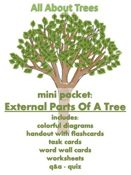 tree diagram worksheets grade 4 frog dissection organs all about trees - mini packet: external parts of a | tpt