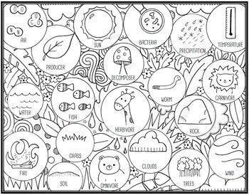 Abiotic and Biotic Factors Seek and Sort Science Doodle