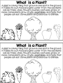 All About Plants NGSS mini-book by Teaching's a Hoot by