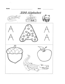 Alphabet A-Z Worksheets Complete Unit by Pointer Education