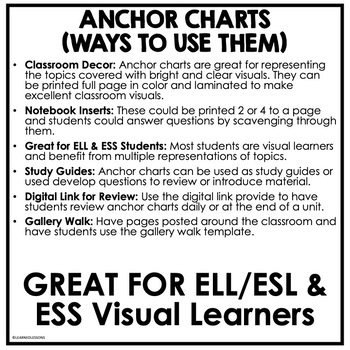 American History ANCHOR CHARTS FREE SAMPLE by Learned Lessons LLC