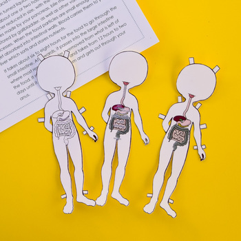 Anatomy Printable Dress-up & Magnetic Paper Doll for ...