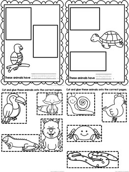 Animal Body Coverings {Printable book, sorting worksheets
