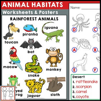 Animal Habitats Worksheets by Catherine S