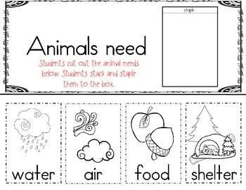 Animal Needs and Winter Adaptations (Hibernate, Migrate