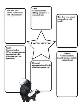 Animal Report: Informational Writing Template by Kathy
