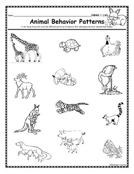 NGSS 1st Grade-LS1 & LS3: Animals: Body Parts, Physical