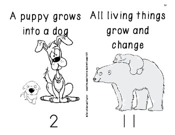 Animals Unit for First Grade Science by Julie Alderson