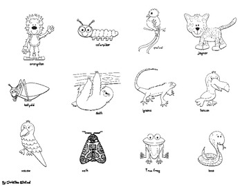 Animals in the Rain Forest Sort, Cut, and Paste Activity
