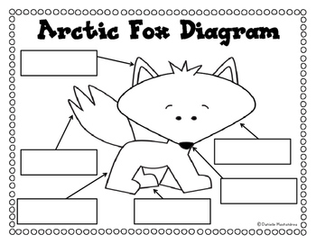 Arctic Animal Reports- Informational Non-Fiction Report