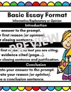 Essay writing anchor chart also by no fluff zone teachers pay rh teacherspayteachers