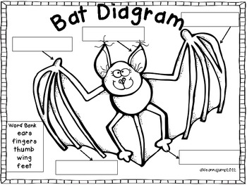 Bats Math and Literacy Fun Aligned with Common Core by