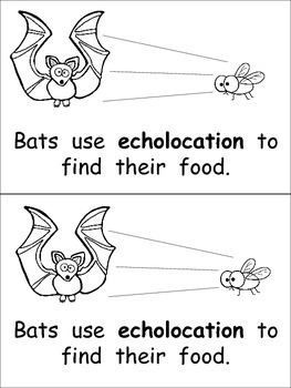 Bats- Nonfiction Leveled Reader- Level C by Melissa
