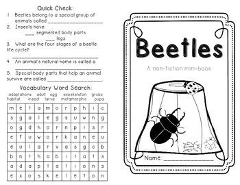 Beetles: Life Cycle, Habitats and Adaptations by Resources