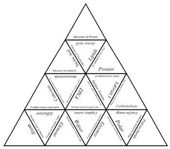 Biochemistry Vocabulary Tarsia Puzzle by I Teach Science