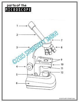 Biology Lab MICROSCOPE PowerPoint and Guided Notes w