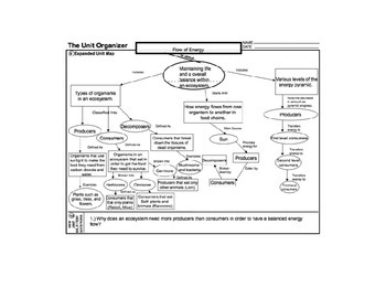 Biology Life Science Flow Of Energy Unit Outline Graphic